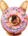 Avanti Puppy Yummy Birthday Balloon